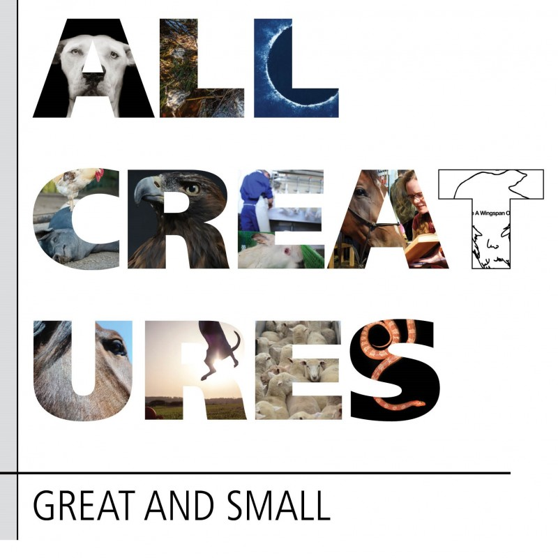 All Creatures Great and Small Exhibition