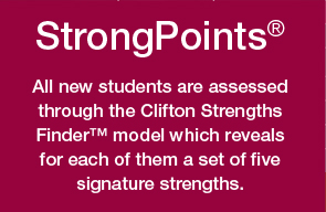 StrongPoints definition
