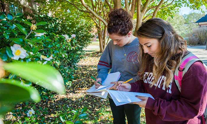 Students Studying Plants