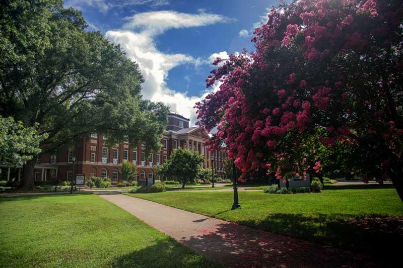 Johnson Hall with greenery