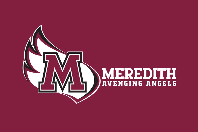 Avenging Angels athletics logo --wing with large M inside