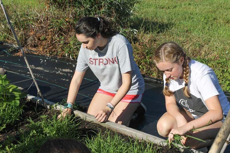 Students preparing garden soil