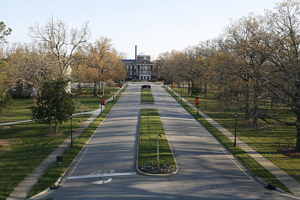Road leading to Johnson Hall