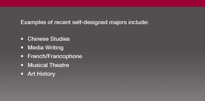 Examples of Self Design Majors include, Chines Studies, Media Writing, Art History, etc