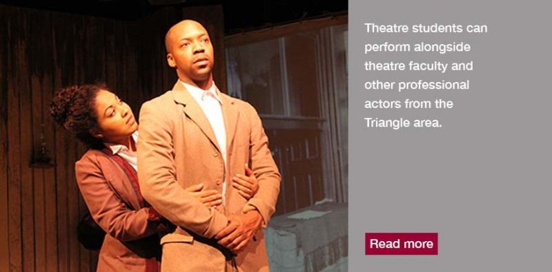 Theatre students can perform along faculty or other professionals