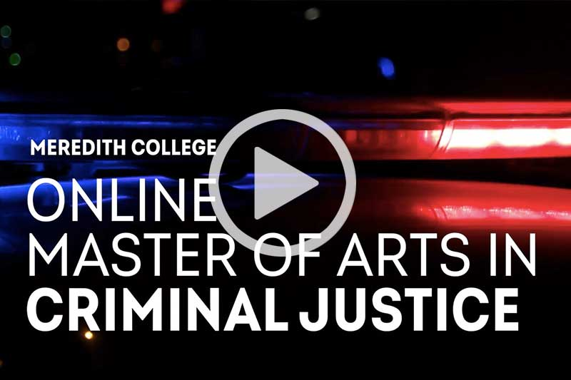 Cluck image of blue and red police lights on dark black background to play Criminal Justice Video