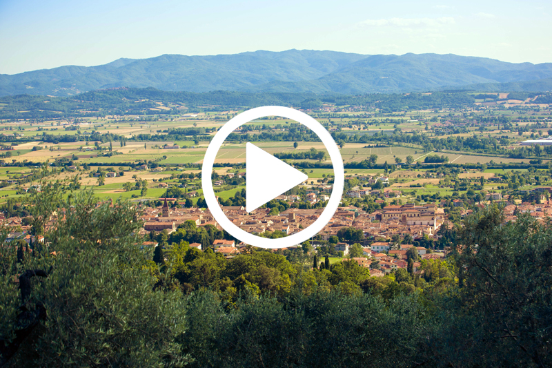 video about Italian Renaissance