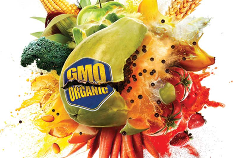 Exploding fruit with a GMO sticker